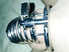 My cuck In chastity