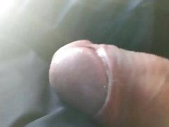 erecto en el bus