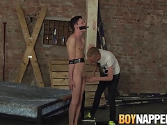 Xavier Sibley is mummified by smoking thug Ashton Bradley